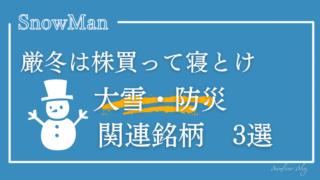 大雪-関連株-関連銘柄